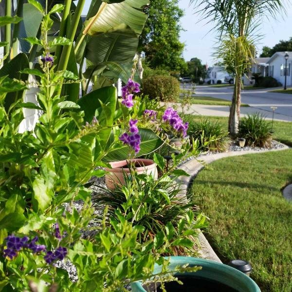 New Smyrna Beach Property Management Sales Edgewater Fl