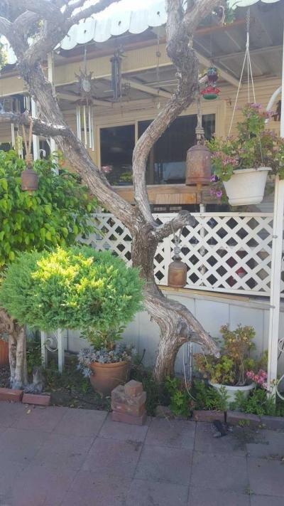 Mobile Home at 15300 Brand Blvd.  Mission Hills, CA 91345