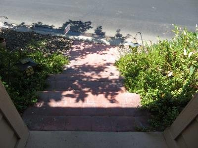 Steps in front of home