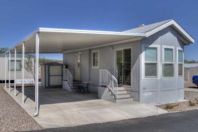 Mobile Home at 17065 E Peak Lane #286 Daisy Lane Picacho, AZ 85141