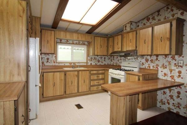 1981 Skyline Mobile Home For Sale