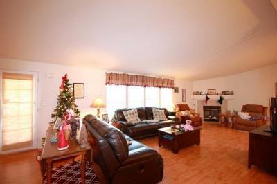 Entertaining Living Room