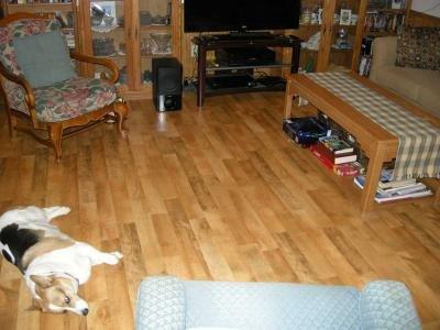 laminate floors throughout