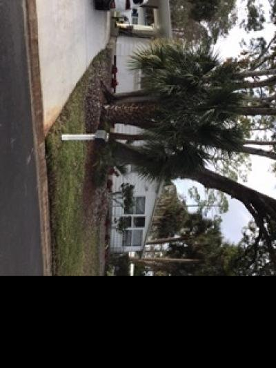 Mobile Home at 40 PINE IN THE WOOD Port Orange, FL 32129