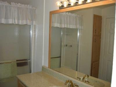 large mirror and vanity