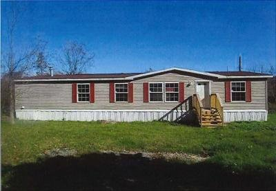 Mobile Home at 97 Catatonk Creek Rd. Candor, NY 13743