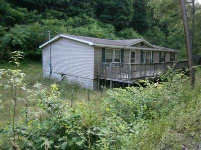 Mobile Home at 901 Dennis Fork Rd. Mount Zion, WV 26151