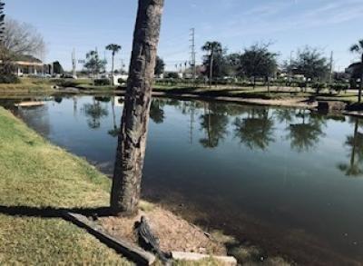 1269 Allium Lakeland, FL 33803
