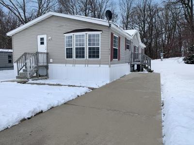 Mobile Home at 610 Little Pierre Charlotte, MI