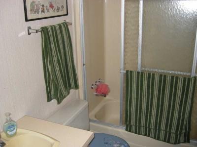 guest bath, tub & shower