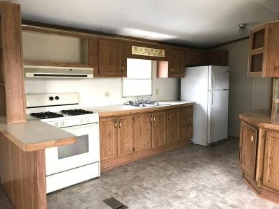 Mobile Home at 5656 Wormuth Lane Conesus, NY 14435