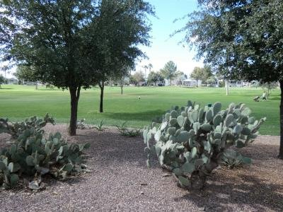 Mobile Home at 1110 North Henness Rd. #139 Casa Grande, AZ