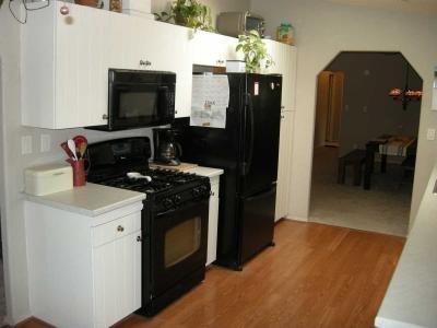 gas stove, basement fridge