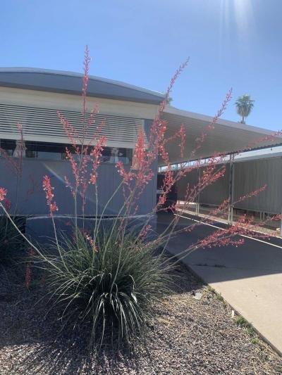 Mobile Home at 303 S Recker Rd Lot 225 Mesa, AZ 85206