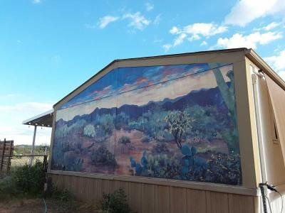 Mobile Home at 12650 S Baldwin Lane Tucson, AZ 85736