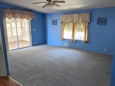 NEW CARPET IN LIVING ROOM