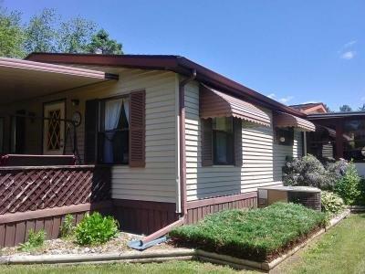 Mobile Home at 316 W. Michigan Ave Lot 85 Clinton, MI 49236