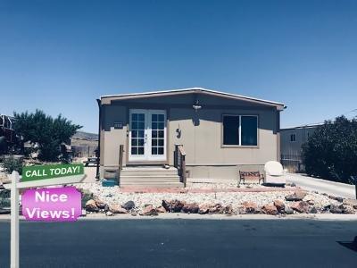 Mobile Home at 3845 Joy Ln Reno, NV 89511
