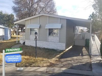 Mobile Home at 675 Parlanti Ln #47 Sparks, NV 89434