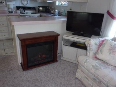 37345 Nicole Terrace Avon Park, FL 33825