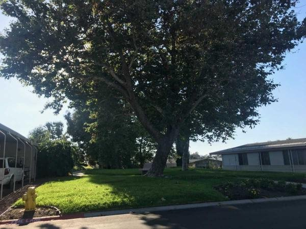 1980 Goldenwest Mobile Home For Rent