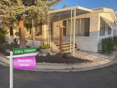 Mobile Home at 133 Trojan Ln Carson City, NV 89706