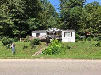 Mobile Home at 462 Trace Fork Rd Harts, WV 25524