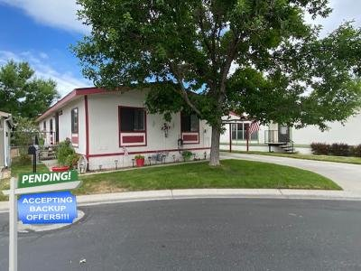 Mobile Home at 2102 Loire St Carson City, NV 89701