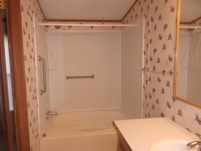 master bath garden tub/shower