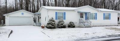 Mobile Home at 3844 Havenwood Jackson, MI 49201