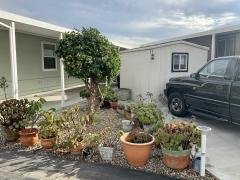 FRUIT TREES AND LANDSCAPING