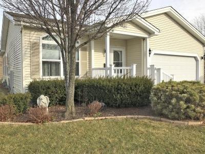 Mobile Home at 1507 Meadow View Lane Grayslake, IL 60030