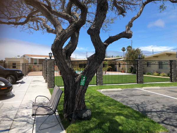 1987 Golden West Mobile Home For Sale