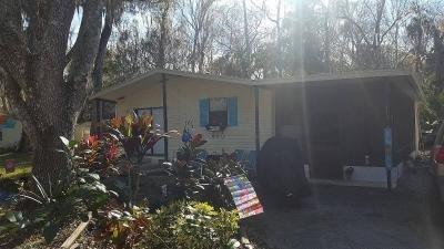 Mobile Home at 2320 Eslinger Road New Smyrna Beach, FL 32168