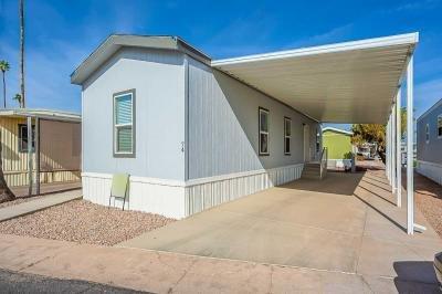 Mobile Home at 2701 E Allred Ave Lot #74 Mesa, AZ 85204