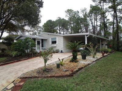 Mobile Home at 2996 Turtle Dove Trail Deland, FL 32724