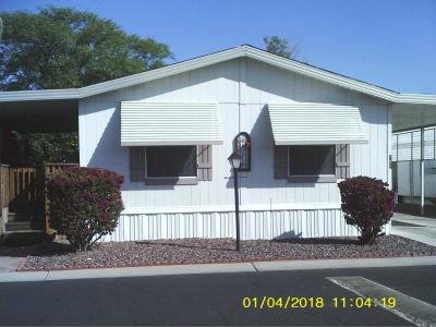Mobile Home at 10955 N, 79th Ave. Lot#157 Peoria, AZ 85345