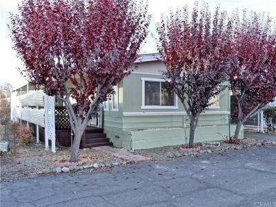 Mobile Home at 5701 Live Oak Dr., Sp 35 Kelseyville, CA 95451