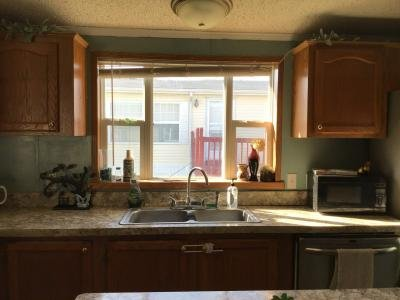 Mobile Home at 222 Ash Ridge Mason, MI 48854