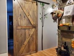 Barn door to Master bd