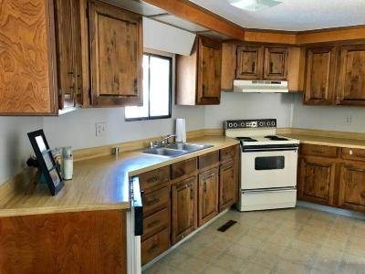 Mobile Home at 25 Silver Plume Drive Parachute, CO 81635