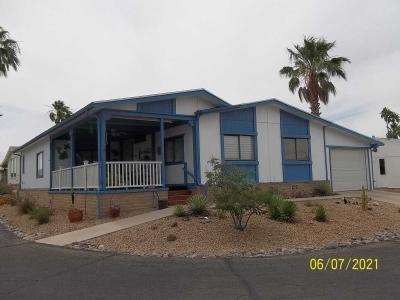 Mobile Home at 15301 N. Oracle Road #40 Tucson, AZ 85739