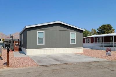 Mobile Home at 825 N. Lamb Blvd. Las Vegas, NV 89110