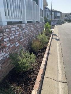 Photo 5 of 25 of home located at 1245 W Cienega Avenue #25 San Dimas, CA 91773