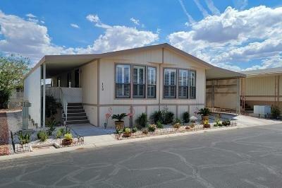 Mobile Home at 8122 W. Flamingo Rd. Las Vegas, NV 89147