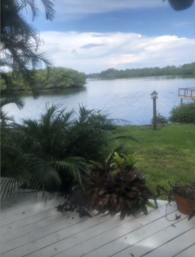Mobile Home at 1606 Susie Circle Ruskin, FL 33570