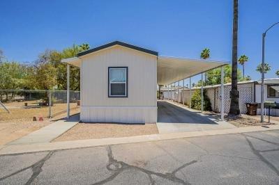 Mobile Home at 10540 E. Apache Trail, #323A Apache Junction, AZ 85120