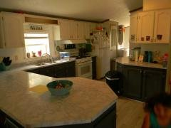 Photo 2 of 35 of home located at 141 Concord Dr. Adrian, MI 49221