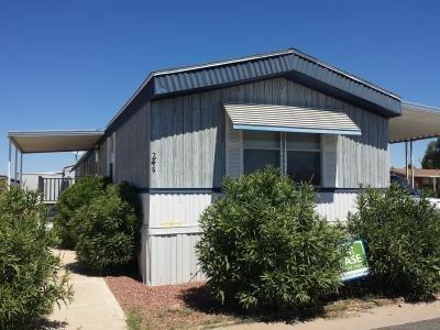 Mobile Home at 12721 W Greenway Rd Lot #236 El Mirage, AZ 85335