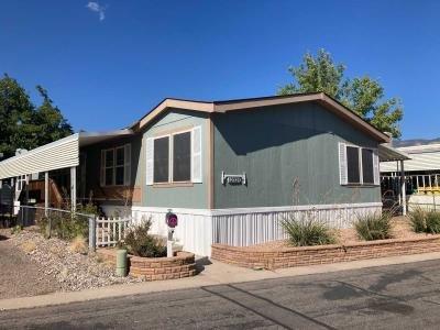 Mobile Home at Juan Tabo / Piru Blvd. SE Albuquerque, NM 87123